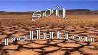 Polluted Soil Recovery